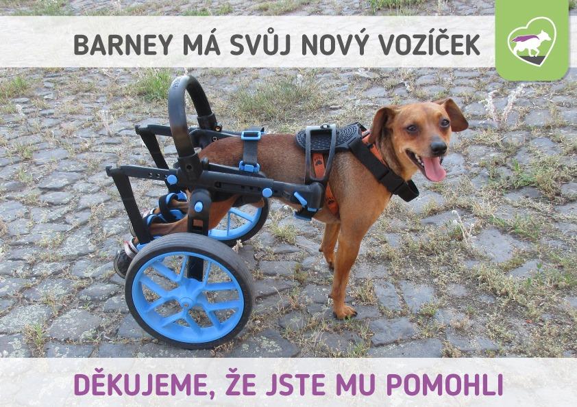 Barney má nový vozíček