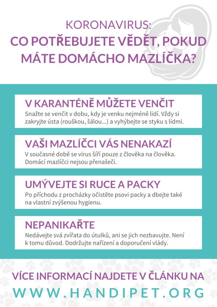 Koronavirus: Co potřebujete vědět, pokud máte domácího mazlíčka