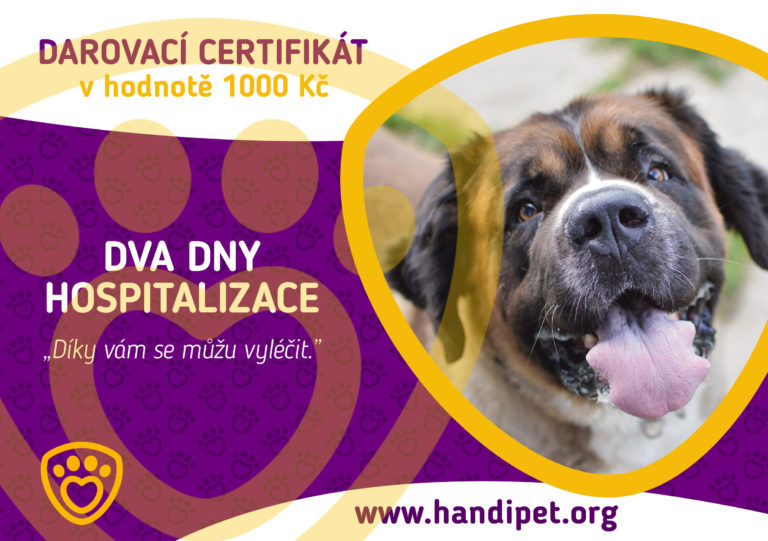 Darovací certifikát: dva dny hospitalizace pro pejska za 1000 Kč
