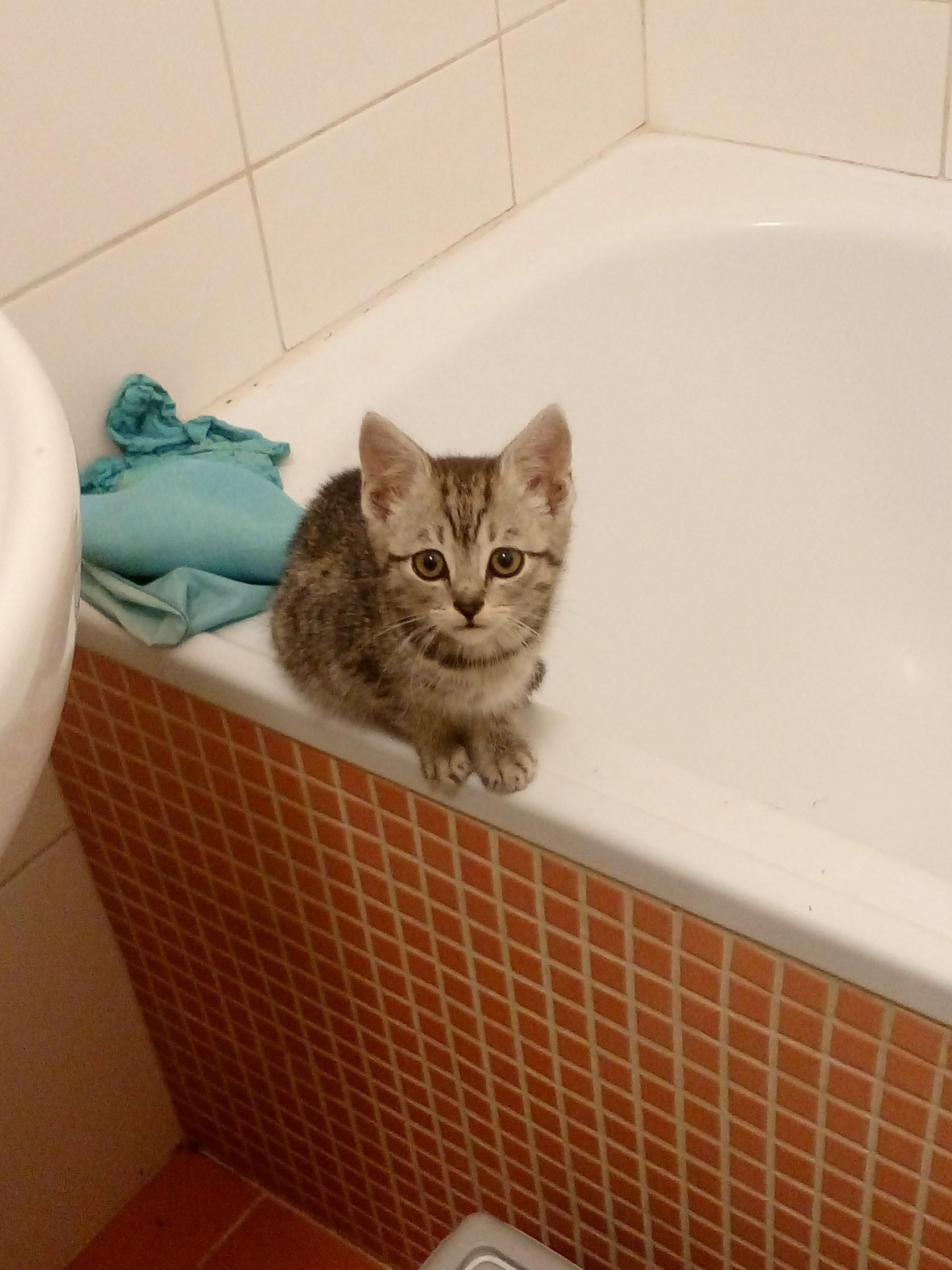 Eva na vaně