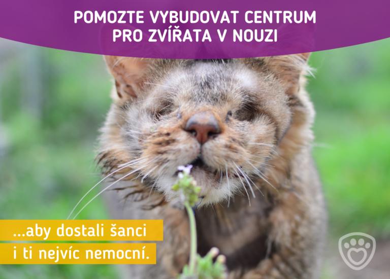 Pomozte vybudovat centrum pro zvířata v nouzi. Aby dostali šanci i ti nejvíc nemocní.